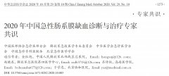 2020年中国急性肠系膜缺血诊断与治疗专家共识
